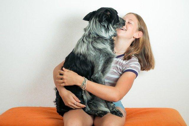 03 maladies que les chiens peuvent transmettre à un homme
