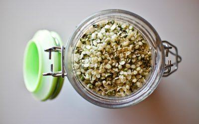 Découvrir les vertus médicinales des graines de chanvre